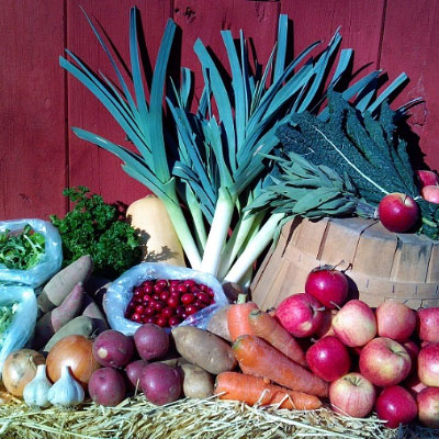 Winter Vegetable Share
